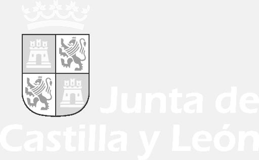 Junta Castilla y León Logo